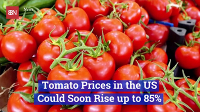 The Cost Of Tomatoes Are Going Up